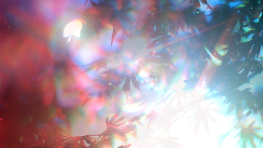 Screen Shot 2015-04-15 at 12.16.06 AM