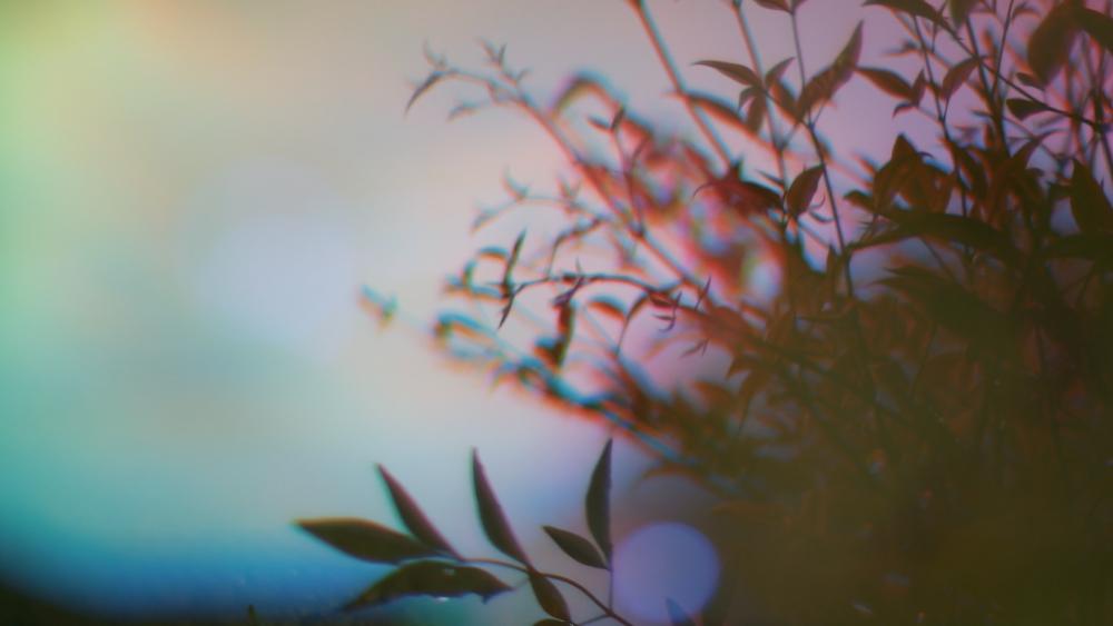 Screen Shot 2015-04-15 at 12.16.34 AM